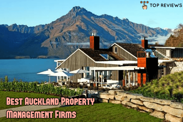 Best Auckland Property Management Firms