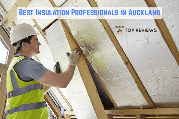 Best Insulation Professionals in Auckland