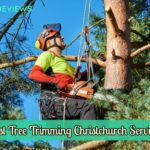 Best Tree Trimming Christchurch Services
